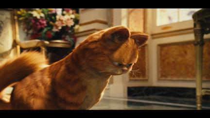 Garfield 2: A Tail of Two Kitties, Film Work (2005)