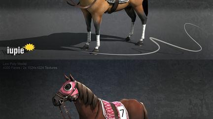 Race Horse Simulation - 1