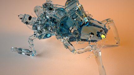 Glass Data Robot