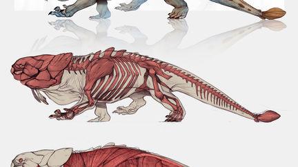 Draco Bullitis - The Bubble Dragon