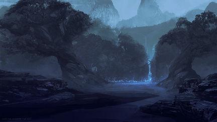 Night time Jungle