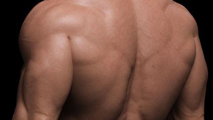 Arnold back shot close up