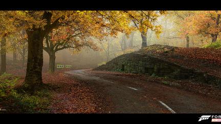 FH4 - Woodland Mood Concepts