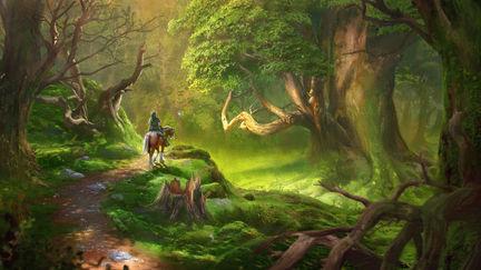 Fehr 1 kokiri forest 1 af0897f2 jj4l