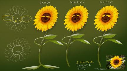 Sunflower character design study