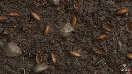 Substance Designer: Wet Forest Ground