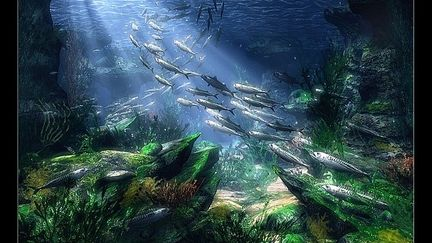 Underwater-fish's Dream