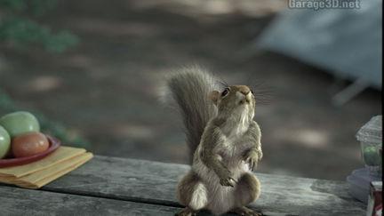 Squirrel still image for milk commercial