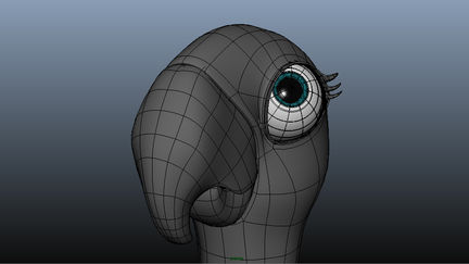 Female Parrot wireframe