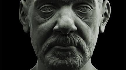 face study