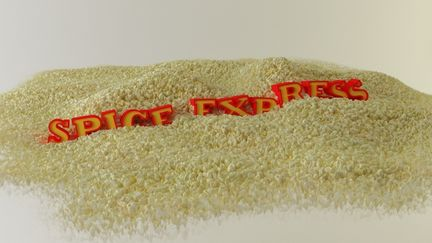 spice express logo