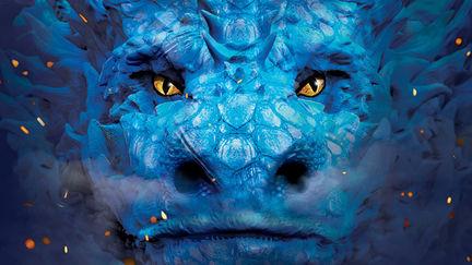 Liz Flanagan – book cover for Dragon Girl hungarian edition