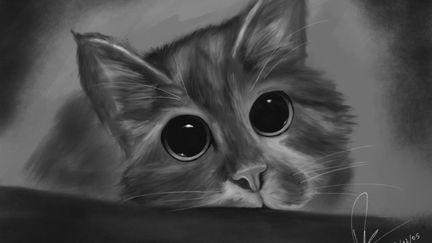 A cat!