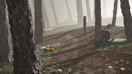 NanoMesh Forest