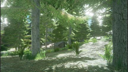 Forest level - ue4