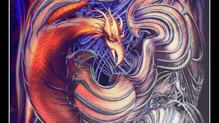 For a Phoenix, an End Is a Beginning