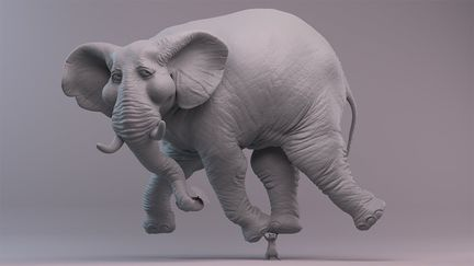 The Amazingly Lightweight Elephant