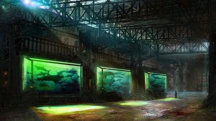 Shark Farm