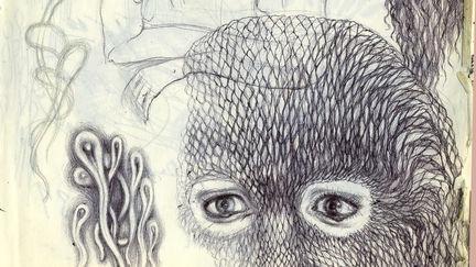 fan art.  under the influence of Fur: An Imaginary Portrait of Diane Arbus