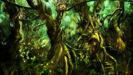 Fireflies Forest