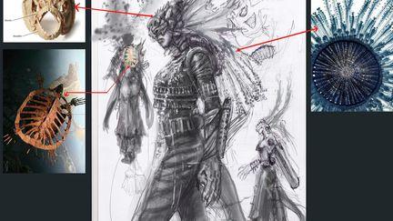 Shinethorns role design 1 41a48338 c8iq