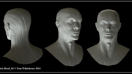 Alien Head 02 Concept Sculpt
