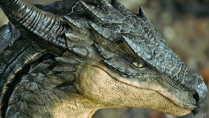 Osometolec Dragon Portrait