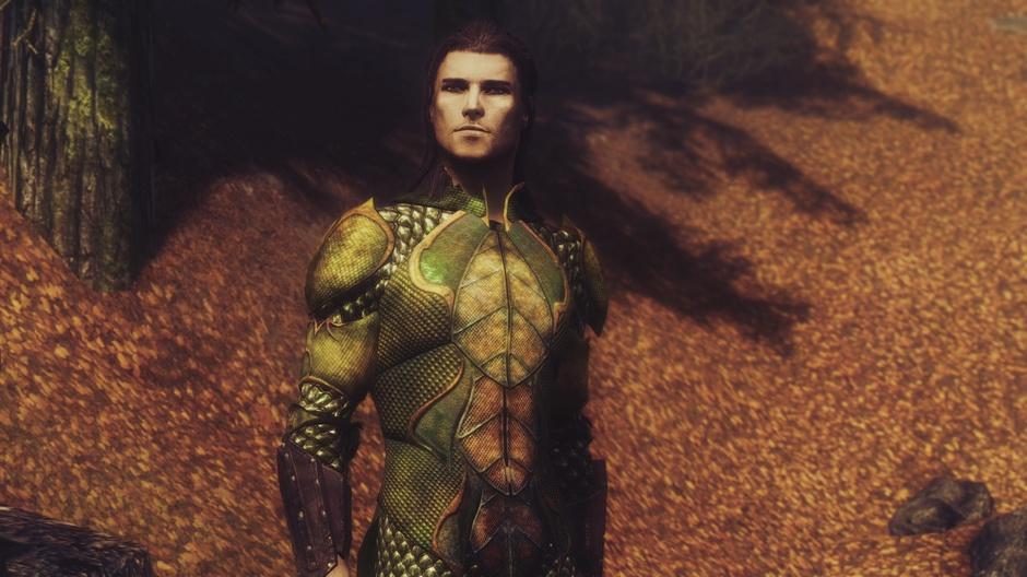 Bosmer Ceremonial Armor