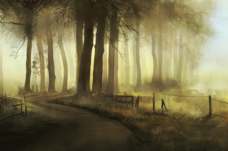 Eilidh forest road 1 6f376ee5 u4z2