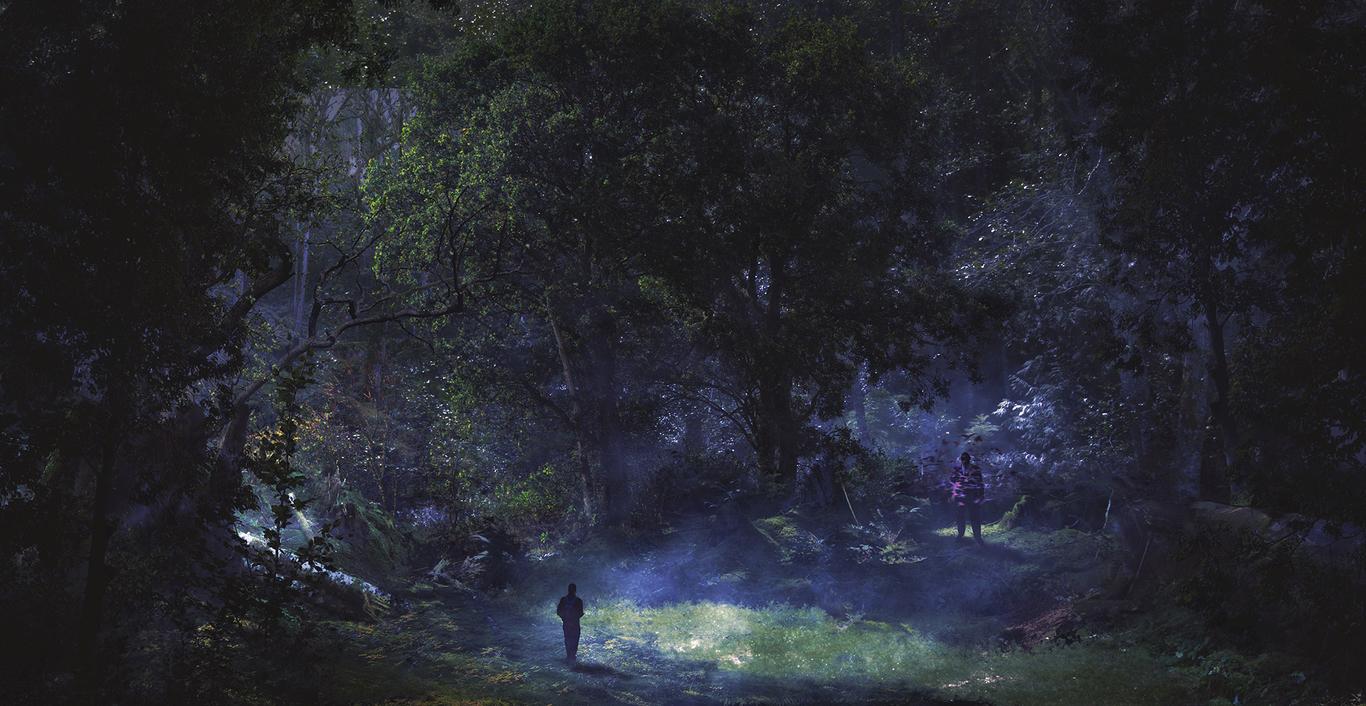 Forest glade (Dusk)