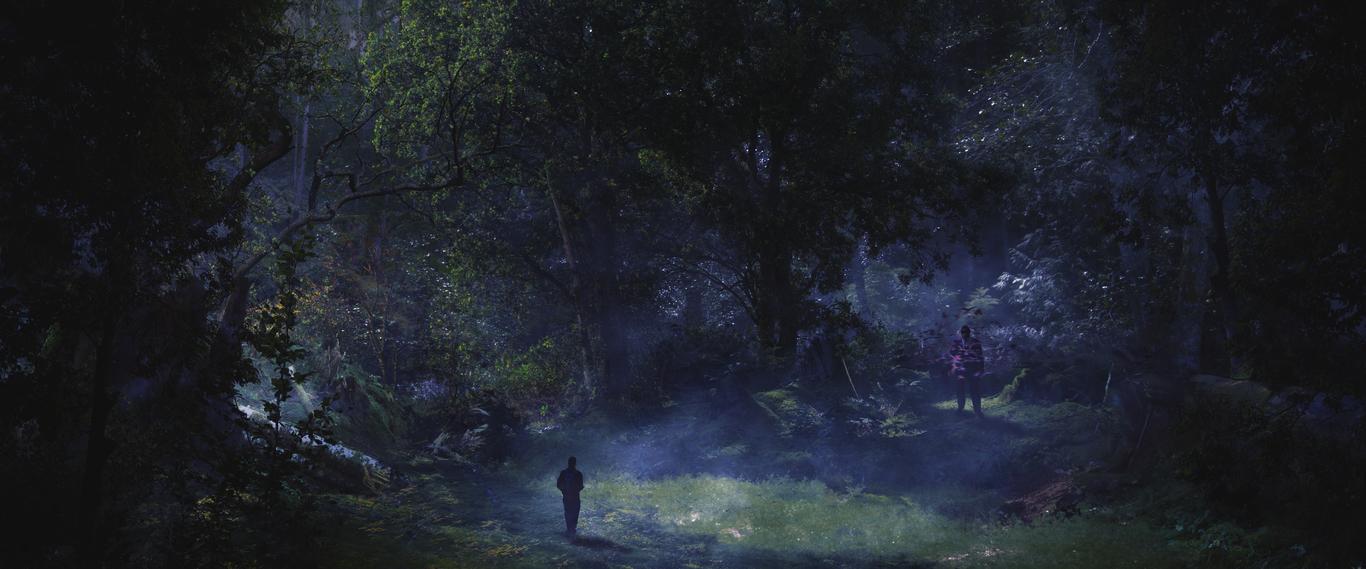 Hardy guardy forest glade dusk 1 f1df2d2b 0cj0
