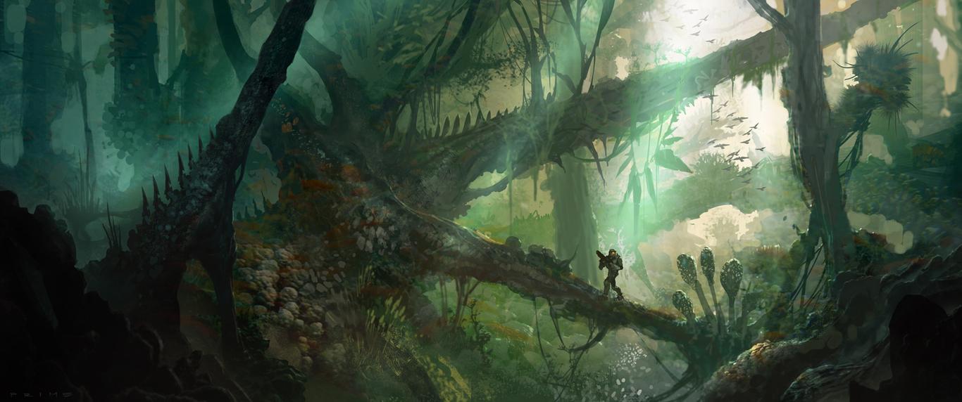Hordeprime jungle nook 1 17ccd528 omlv