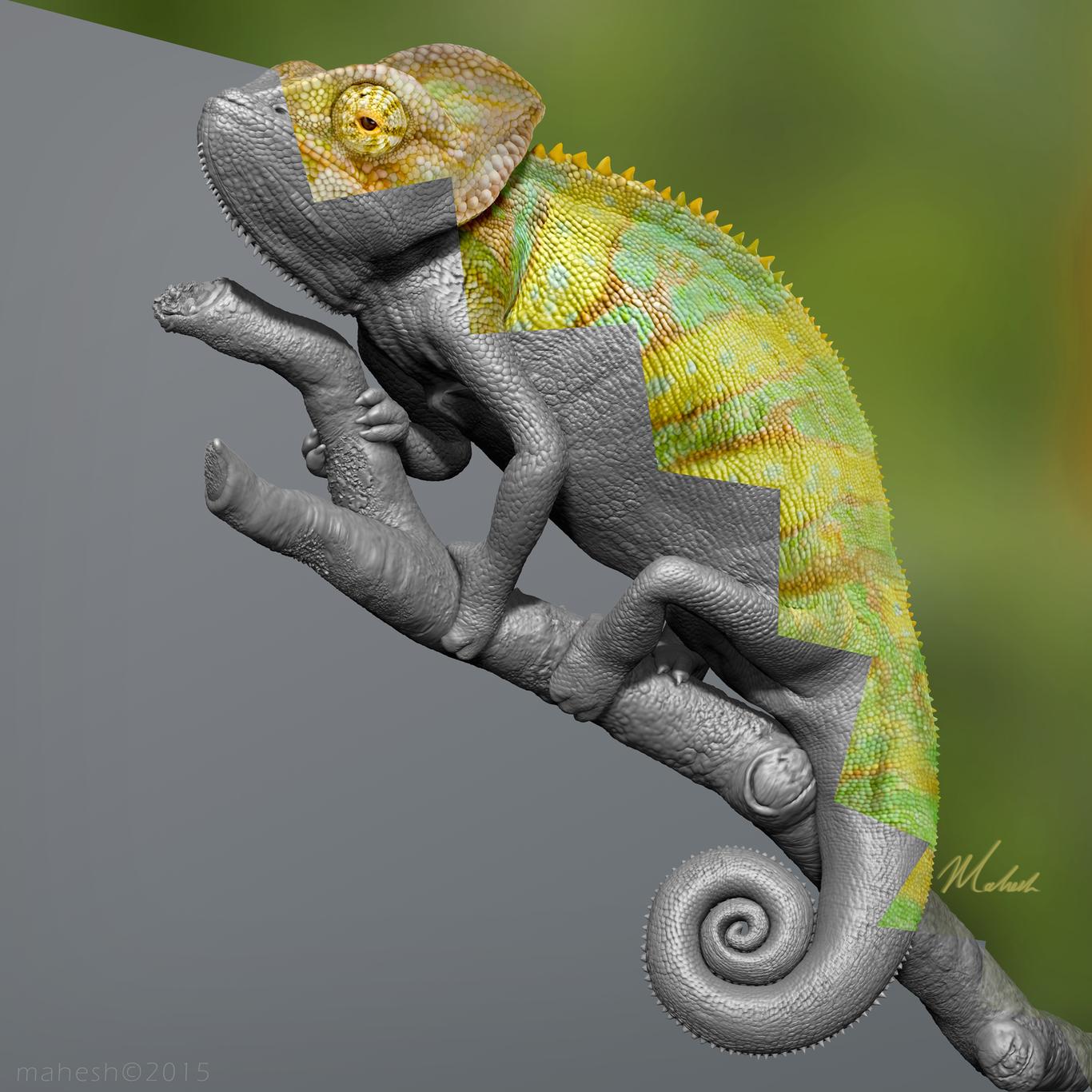 Mahe4art chameleon 1 8921b89d rhde