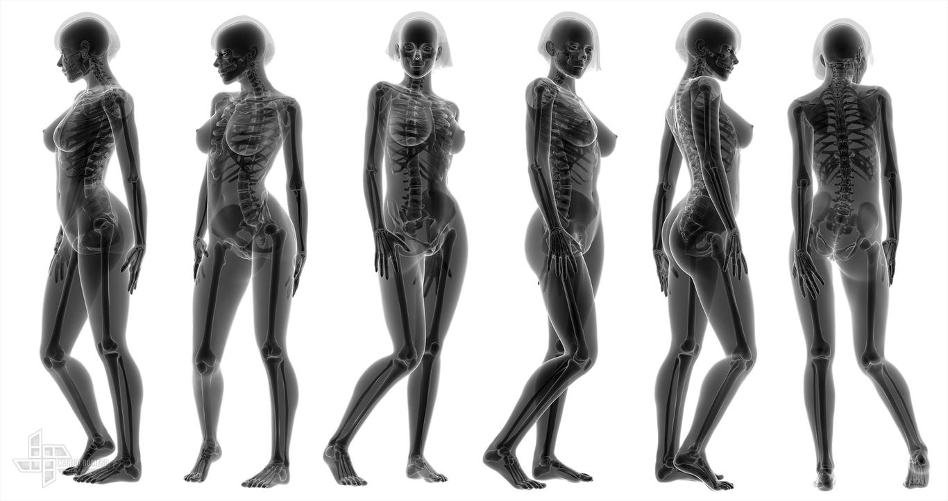 Maromero x ray female 1 f1ab9a95 7b6q