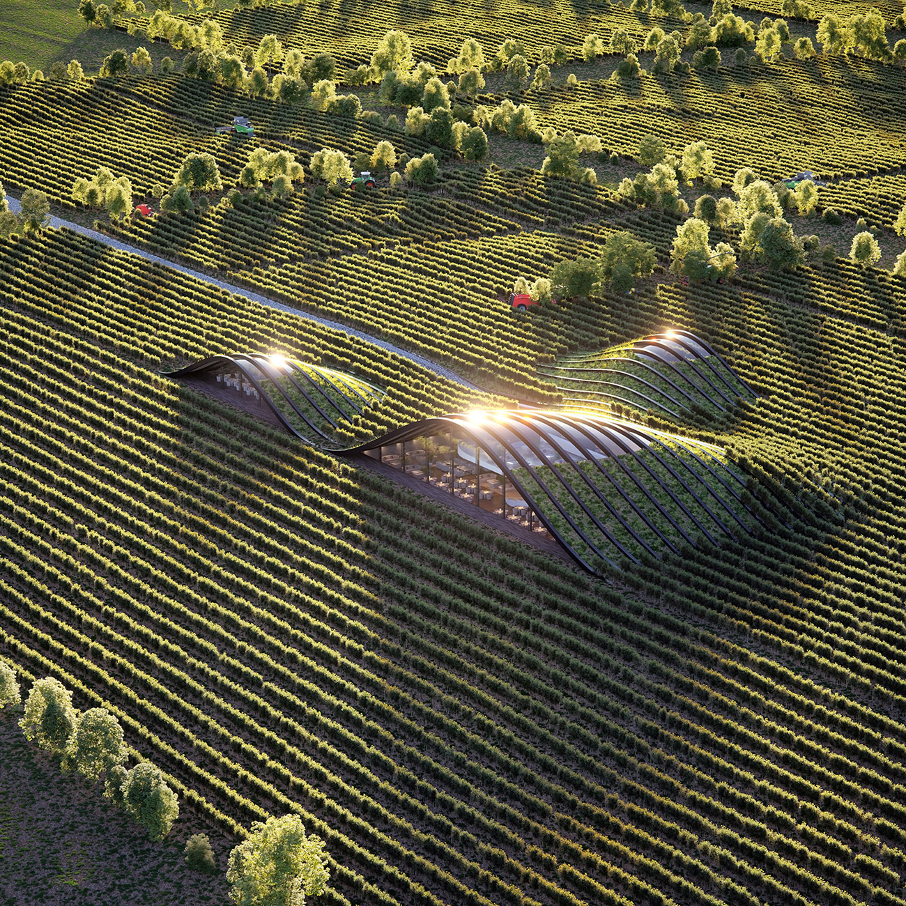 Mixocg vineyard 1 182a5957 d6lh