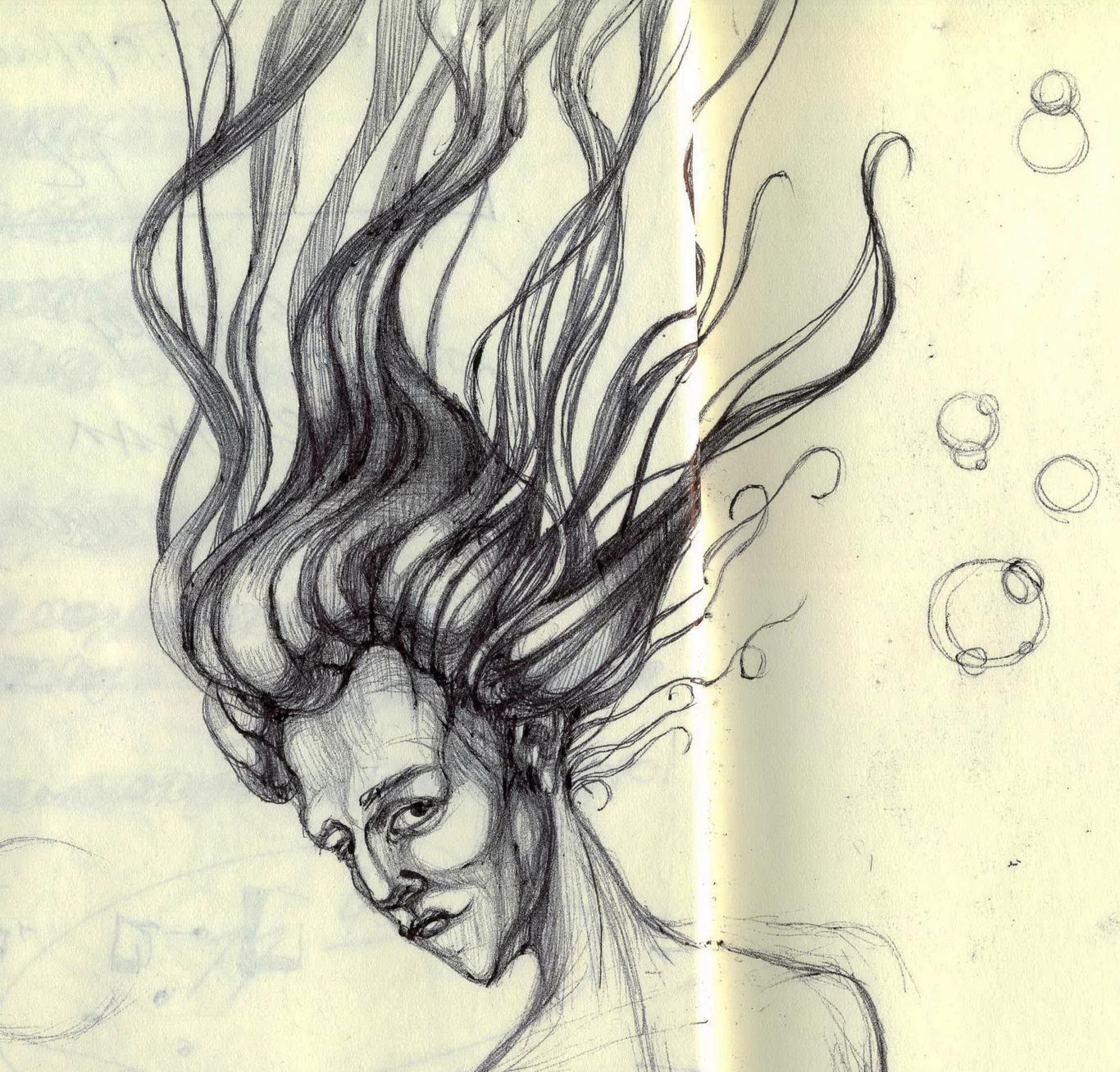 Salamandra 1 sketch 1 1c070660 ogz7