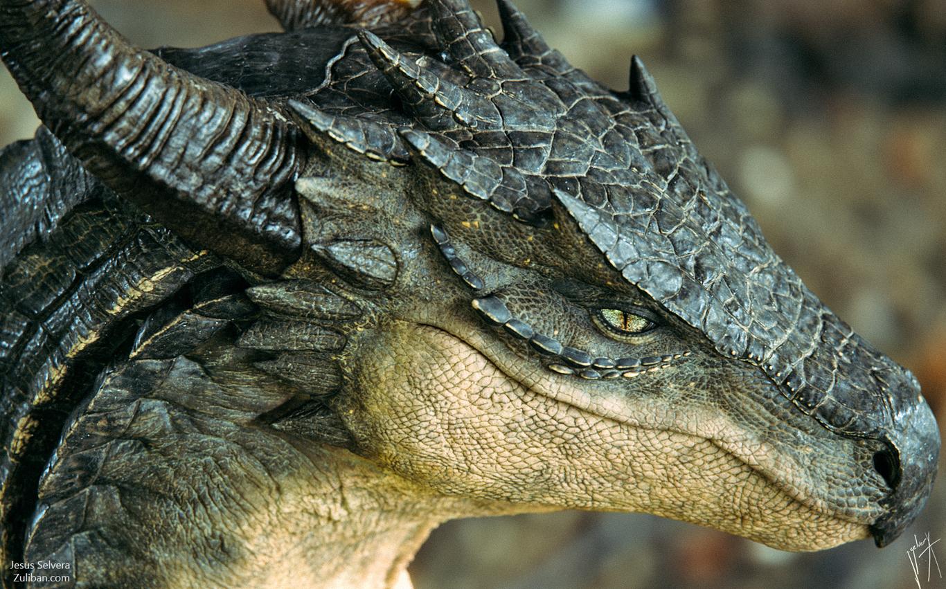 Zuliban osometolec dragon po 1 9da3d076 b3zr