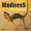 Madness 52f55a15